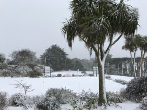 Howth Golf Club Snow